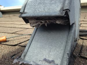 Roof cap transition. Lint has hardened due to moisture.